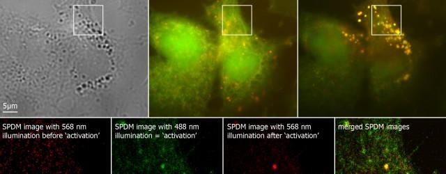 Microscopía de fluorescencia de super resolución. Nobel Quñimica 2014
