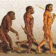 En esta ocasión hablamos de la Teoría de la evolución de Darwin con la ayuda de Antonio José Osuna, aka @biotay.