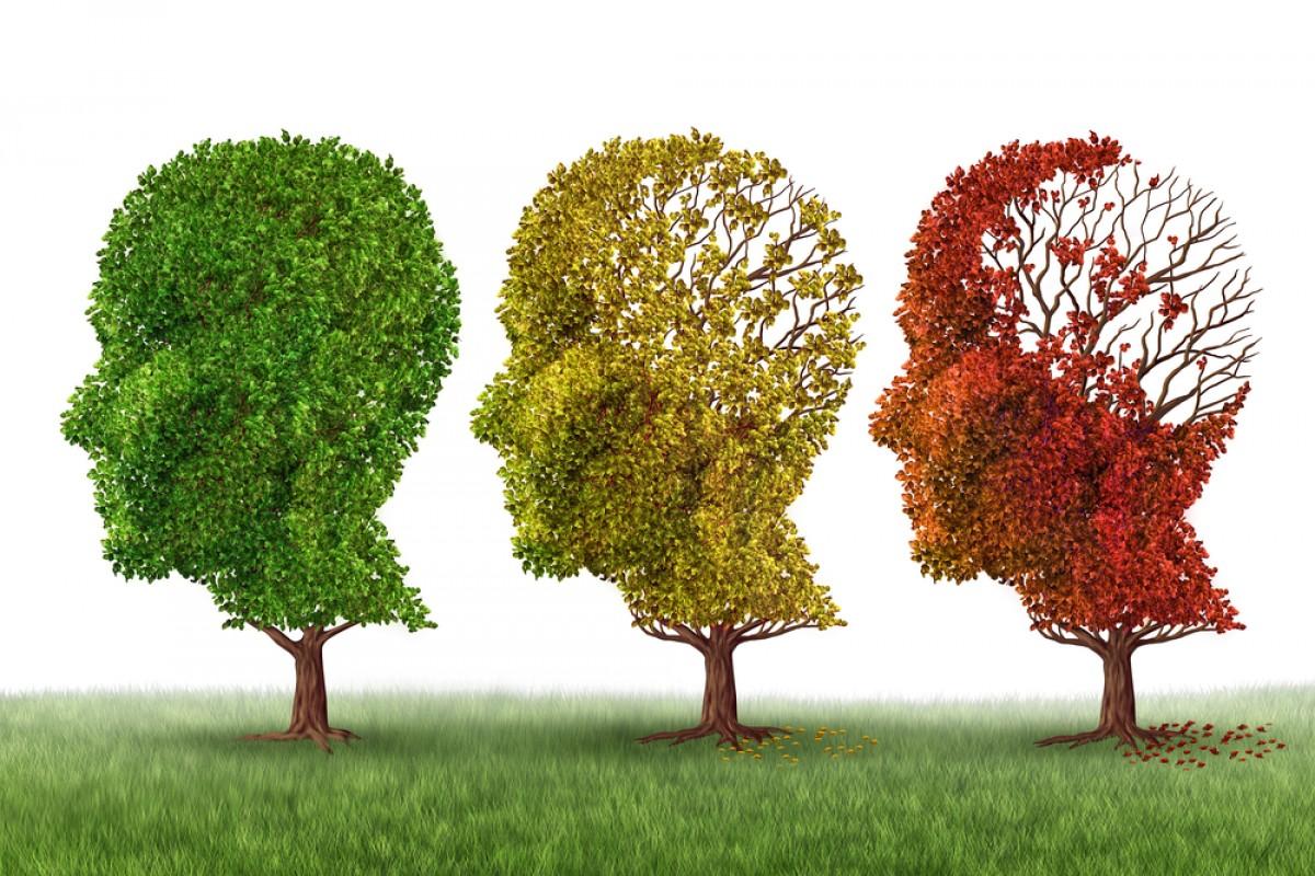 El alzheimer podría estar provocado por hongos