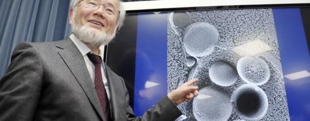 Nobel de Física y Medicina